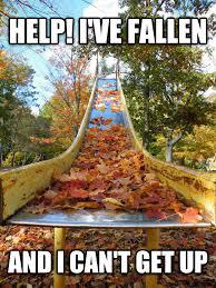 Help I Ve Fallen Meme - livememe com for grandma or leaves