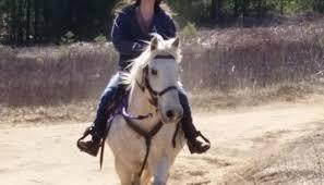 longer winter trail rides carousel farm