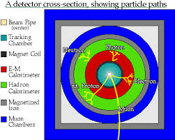 the particle adventure how do we interpret our data detector