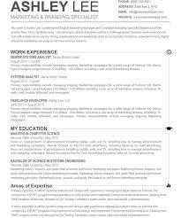 basic sle resume format 2 insidement banking sle resume cv template objective