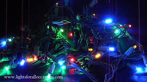 random twinkle led net lights string lights 50 multicolor polka dot leds with random twinkle demo