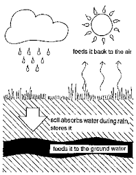 water cycle diagram black and white sketch coloring page