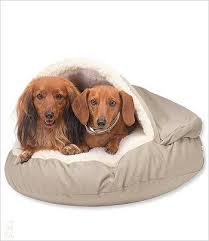 small cozy cave dog bed u2013 g w little