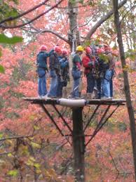 Treetop Canopy Tours by Destination Mansfield U2013 Richland County