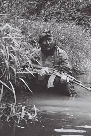 14 best vietnam war special operations images on pinterest