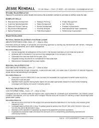 Salesperson Resume Example by Senior Sales Executive Resume Samples Free Resumes Tips