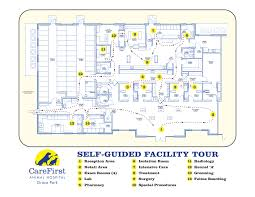veterinary hospital floor plans carefirst animal hospital u2013 tour map
