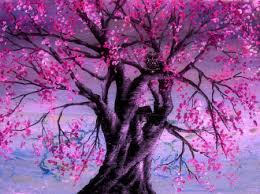 pink tree wisdom forests nature background wallpapers on