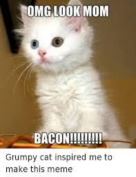 Omg Cat Meme - omg look mom baconii it grumpy cat inspired me to make this meme