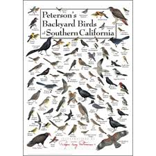 California birds images Peterson 39 s backyard birds of southern california poster bird png