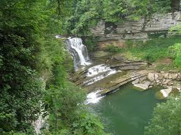Tennessee wild swimming images Beautiful natural swimming holes around the u s photos cond jpg