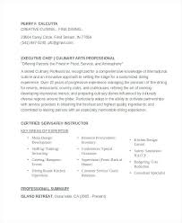 executive resume templates executive resume template medicina bg info
