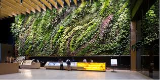 indoor green walls excellent home design contemporary in indoor