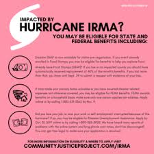 fema help desk phone number hurricane irma resource page community justice project