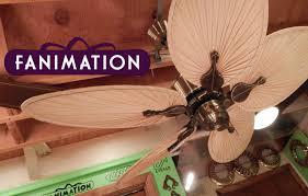 fanimation caruso ceiling fan fanimation islander ceiling fan caruso blades youtube