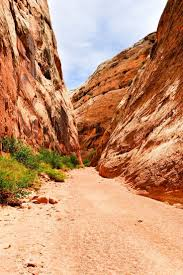 Utah travel meaning images 80 best capitol reef national park images national jpg