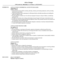 sle of resume auto auction resume sles velvet