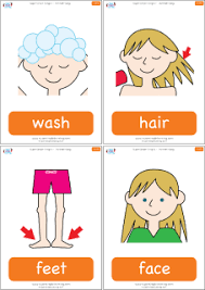 parts of the body flashcards for the super simple learning song