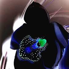 black orchid flower favorable egrow 100 pcs black orchid flower seeds