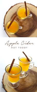 best 25 toddy ideas on classic cocktails easy