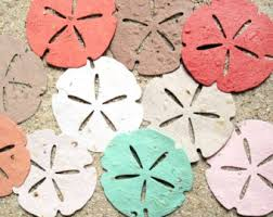 personalized sand dollars sand dollar favors etsy