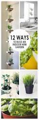 12 ways to build an indoor herb garden gardening viral