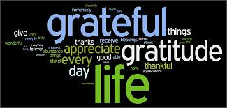 thanksgiving 15 quotes to make gratitude a habit everyday plus a