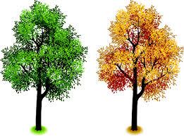 creative isometric trees design vector 02 vector plant free