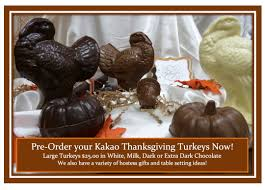 chocolate turkeys kakao chocolatekakao chocolate