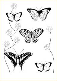 coloring pages of flowers and butterflies and hearts coloring