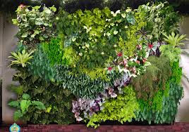 Vertical Garden Adalah - istana alam dewi tara vertical garden landscape nursery design