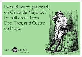 Meme Cinco De Mayo - funny cinco de mayo memes ecards someecards