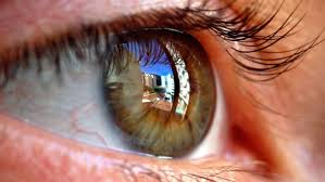 Path Of Light Through The Eye How Do We See Light Reference Com