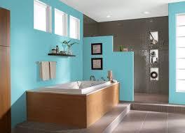 9 best walls images on pinterest behr premium plus home style