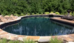 Swimming Pool Design For Small Spaces by Lovely Natural Swimming Pool Designs Eileenhickeymuseum Co