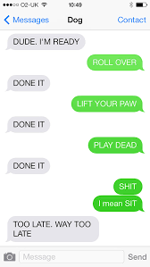 Dog Text Meme - what if dogs could text 25 most hilarious text from dogs 12
