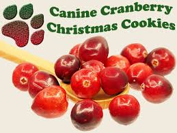 holistic canine cranberry christmas cookie recipe all natural