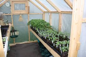 how to build a simple greenhouse home design garden