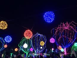 columbus zoo christmas lights 6 of the most festive things you can do in columbus this holiday season