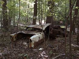 vw schwimmwagen found in forest 466 best cars and trucks wrecks images on pinterest abandoned cars