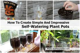 how to create simple and impressive self watering plant pots