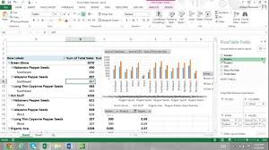 Tutorial Pivot Table Excel 2013 | pivot table tutorial excel 2013 for beginners part 2 report filters