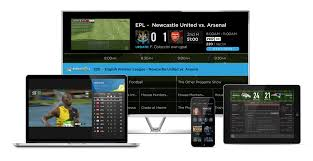 gracenote global sports data