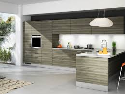 modern kitchen cabinet with rta kitchen cabinets canada grey