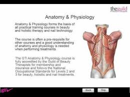 What Is Anatomy And Physiology Class Gti Anatomy U0026 Physiology Free Trial Youtube
