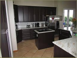 Modern Kitchen Cabinets Miami Modern Kitchen Cabinet Pulls Stainless Steel T Bar Modern Kitchen