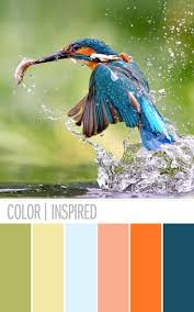 color palette ideas for websites dress colour combination with green architecture for material