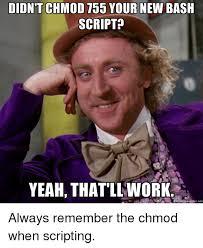 Script Meme - didnt chmod 755 your new bash script yeah that ll work