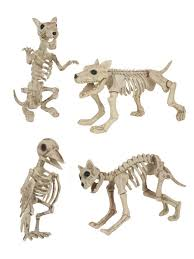 Halloween Decoration Skeleton Cat by Skeleton Dog Cat Rat Bird Halloween Decorations Costumes R Us