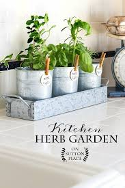 Indoor Garden Containers - kitchen herb garden herbs garden herbs and gardens